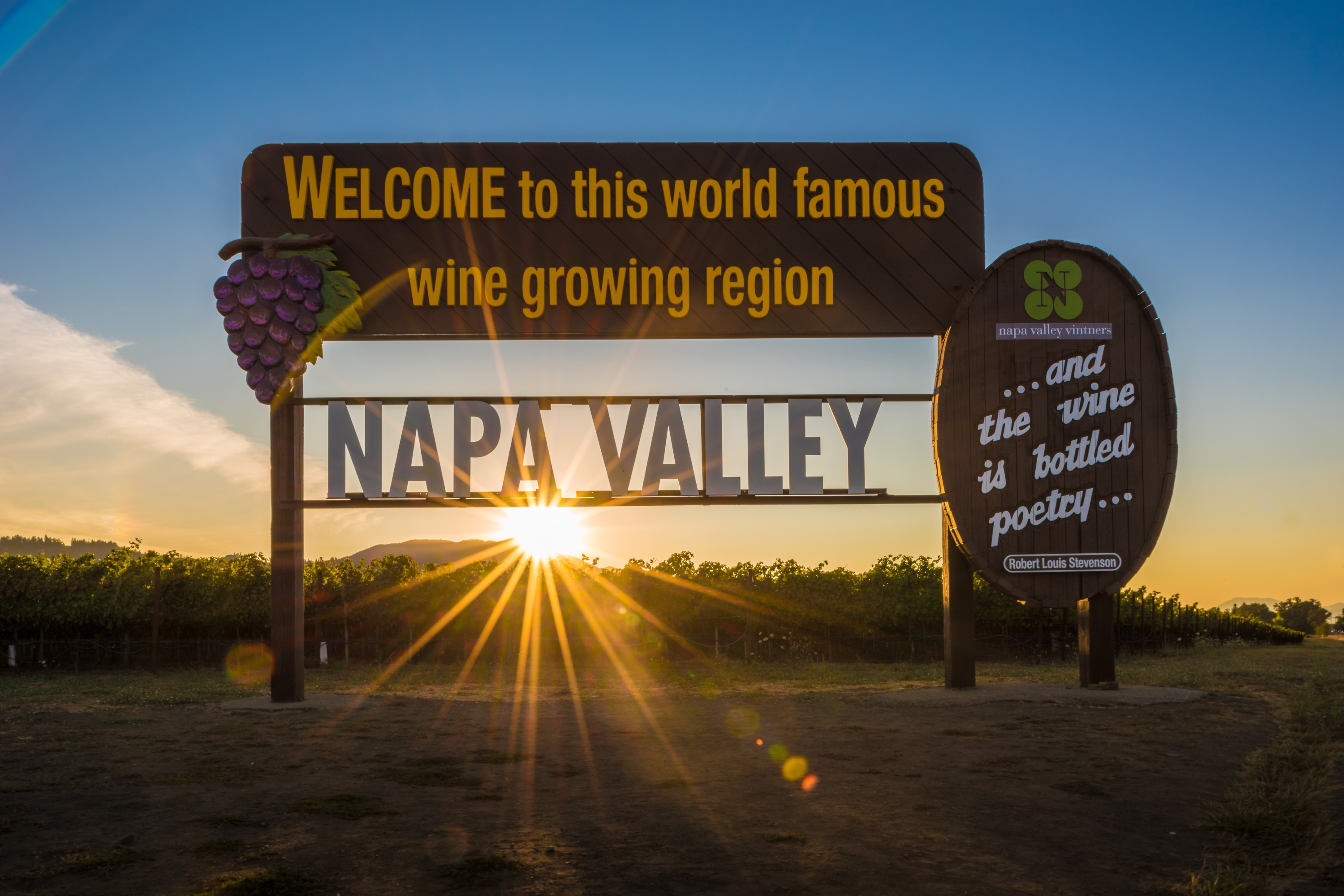 Napa Wine Tours From San Jose