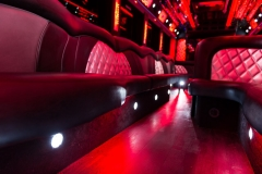 Mona-Lisa-party-bus-interior7